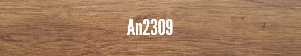 An2309